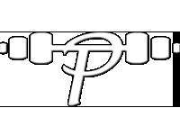 P Training Ltd Logo