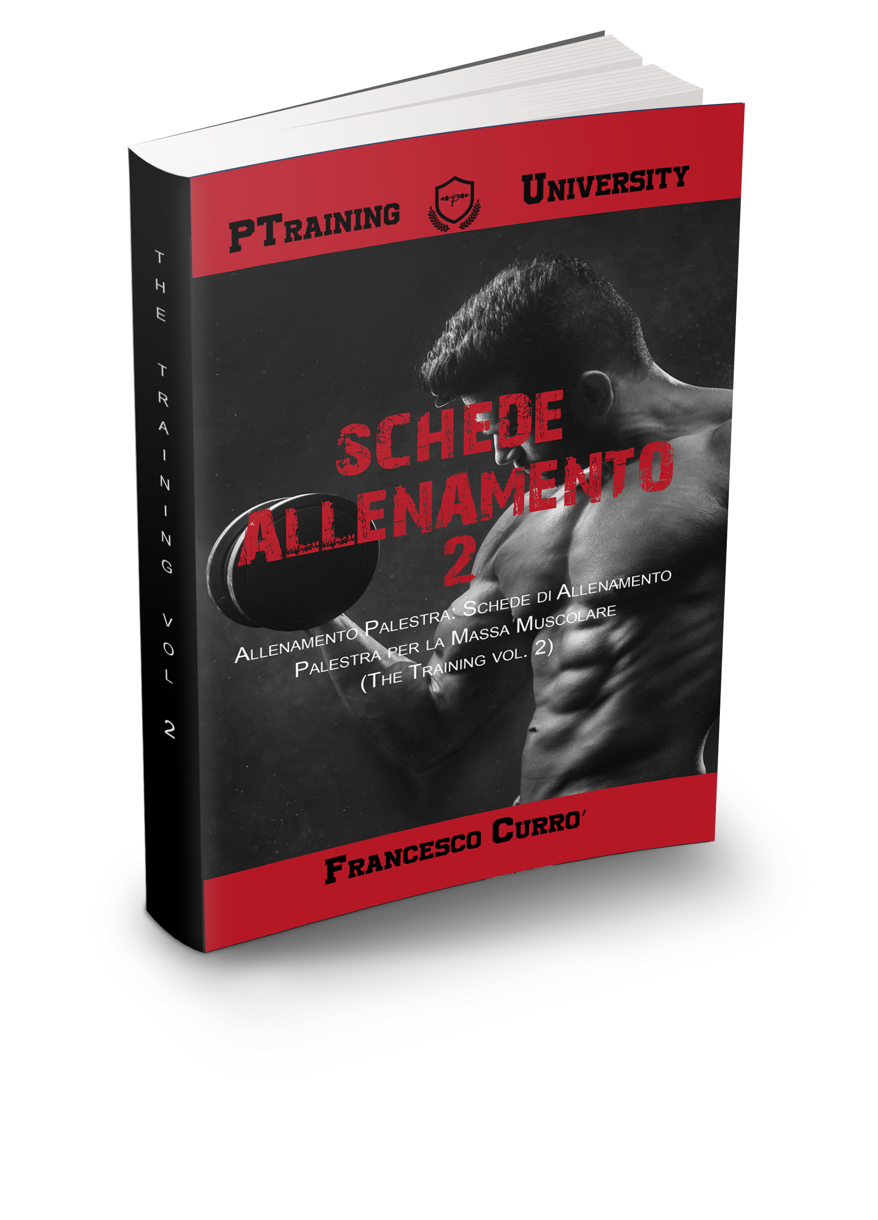 SCHEDE PALESTRA - THE TRAINING VOL 2 3D DX