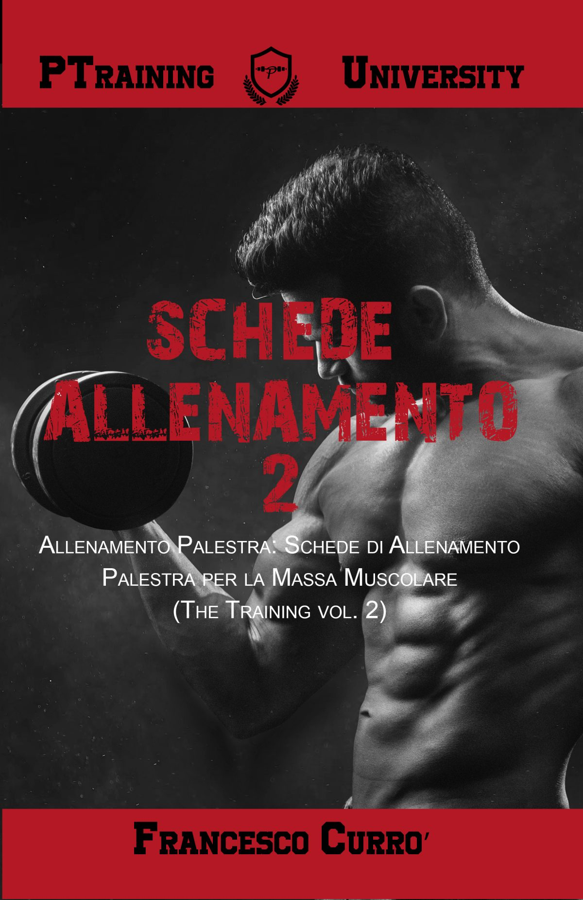 SCHEDE PALESTRA - THE TRAINING VOL 2 - FRONTE